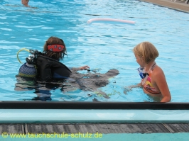 Training Flipper 2 2009